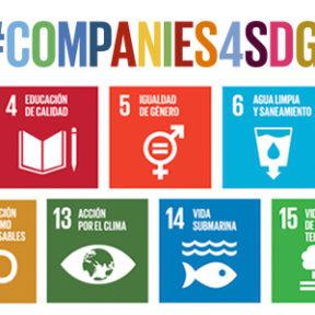 ¡En Voluntarios Telefónica nos sumamos al cumplimiento de los ODS!